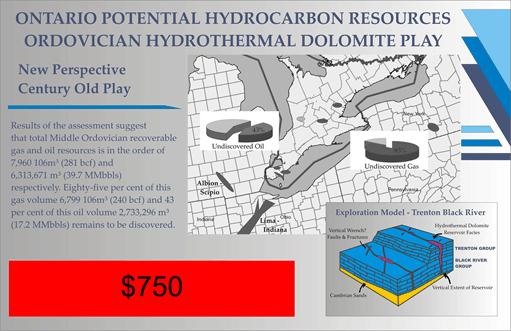 Ordovician Petroleum Reserve Estimates