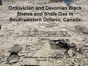 2009 AAPG Presentation on Ontario Shale Gas Potential